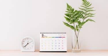 Calendário ao lado de uma planta e de uma relógio