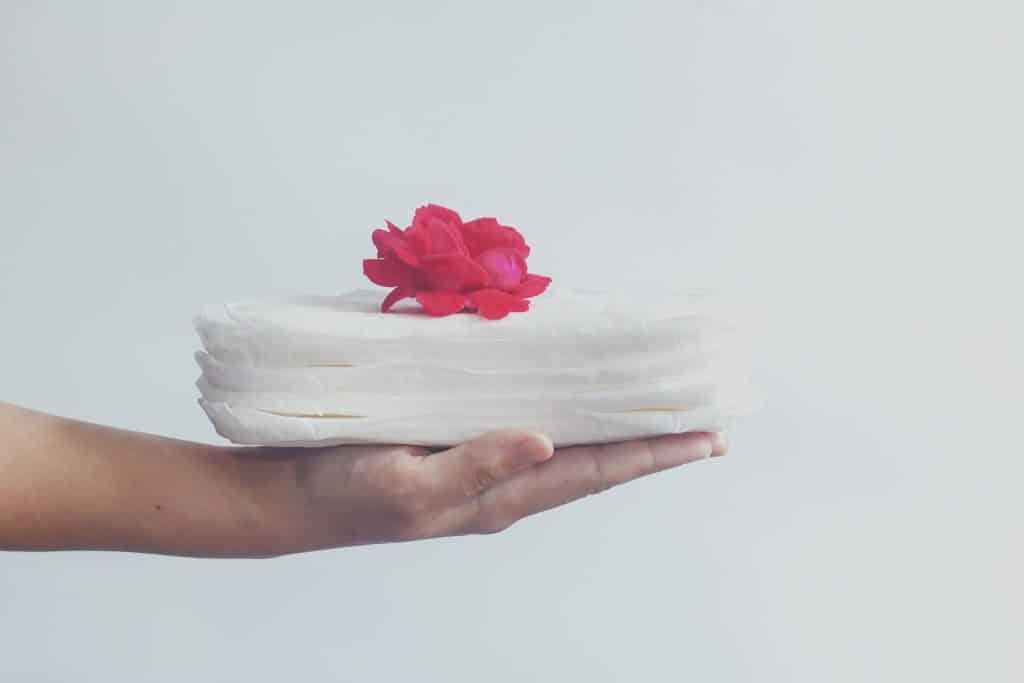 Imagem de vários absorventes de pano feito na cor branca.  Eles estão dispostos sobre as mãos de uma mulher e sobre eles uma rosa vermelha.
