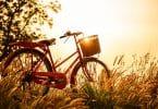Bicicleta vermelha num campo durante o pôr-do-sol