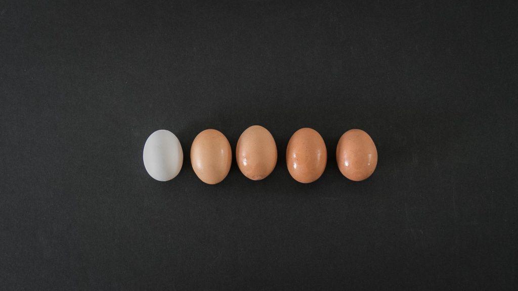 Ovos de diferentes cores.