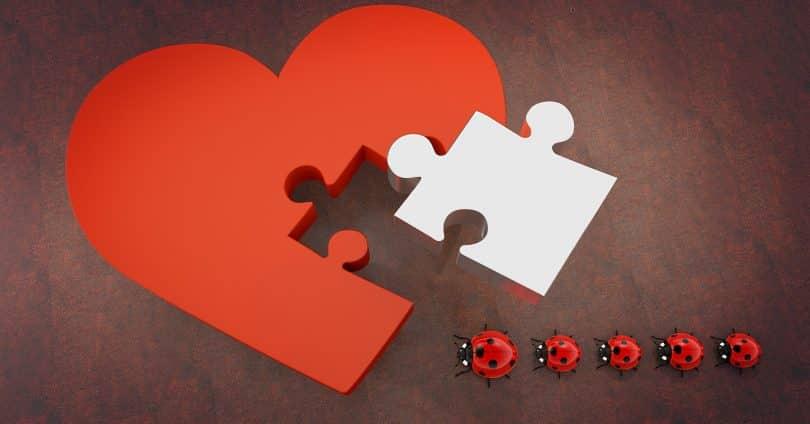 Imagem de um quebra-cabeça em formato de coração na cor vermelho. A peça que precisa completar o quebra-cabeça é branca e representa um amor não correspondido. Ao lado uma fila de joaninhas nas cores vermelho e preto.