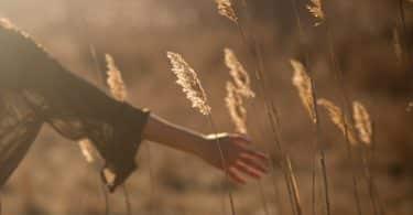 Mulher em um campo florido