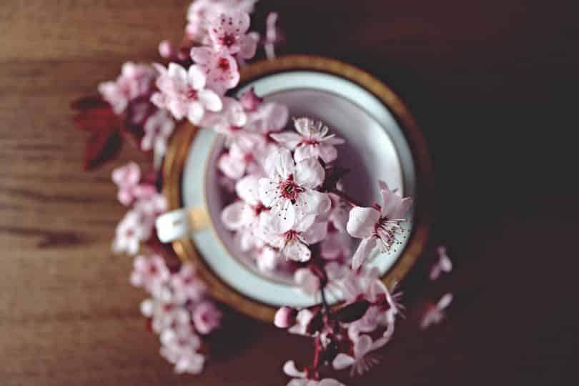 Xícara de chá com flores dentro