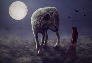 Imagem de um anoitecer com um lindo lobo branco e ao fundo a imagem da lua cheia.