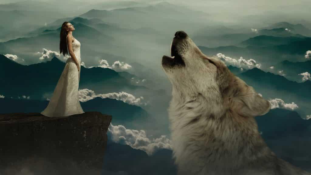 Imagem de um penhasco. Uma linda mulher está na beira da montanha olhando para um grande lobo branco que está a uivar.