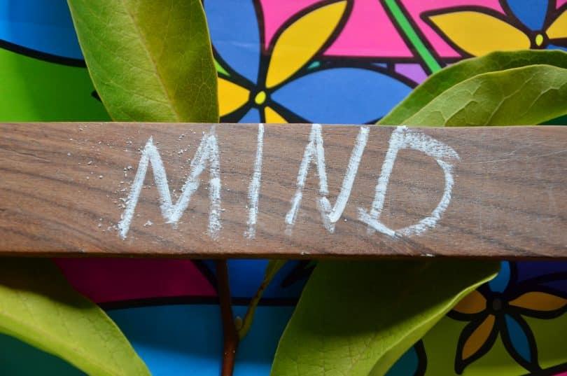 """Palavra """"mente"""" escrita em inglês num pedaço de madeira."""