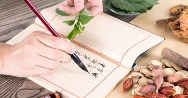 Pessoa escrevendo num caderno com dentes de alho e folhas ao redor.