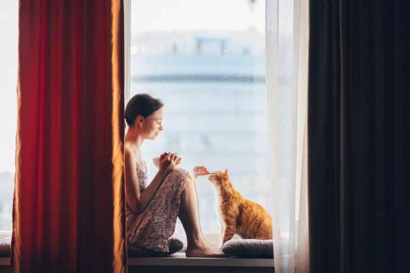 Mulher sentada na janela com gato na frente