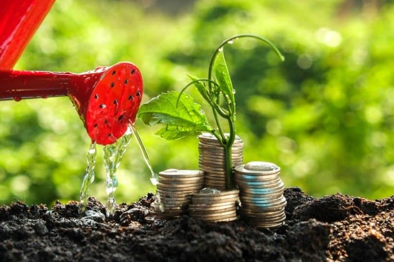Regador jogando água em planta com moedas ao lado