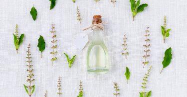 Imagem de um frasco de óleo essencial feito de manjericão e outras ervas. Ao lado do frasco, vários tipos de ervas e de manjericão.