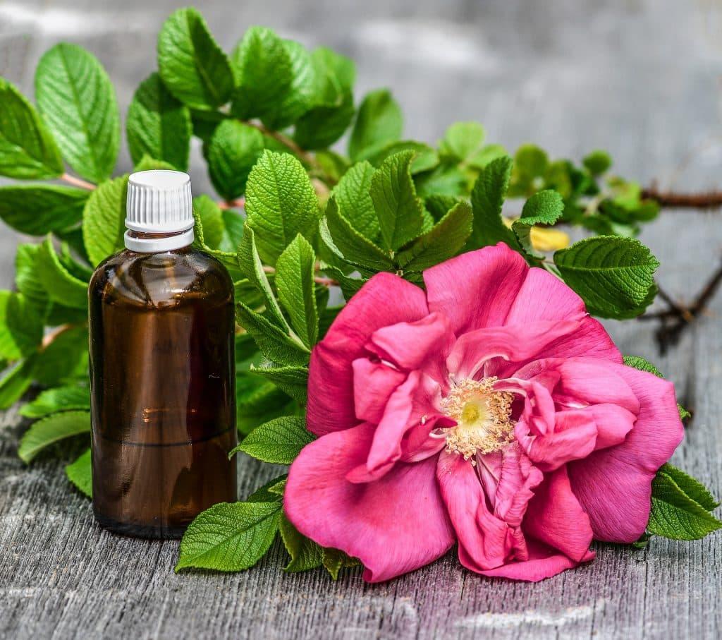 Imagem de um frasco de óleo essencial e ao lado dela uma rosa aberta.