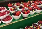 Imagem de vários potes brancos contendo diversos tipos de frutas vermelhas como: morango, uvas mirtilo, que são ricas em antioxidantes.