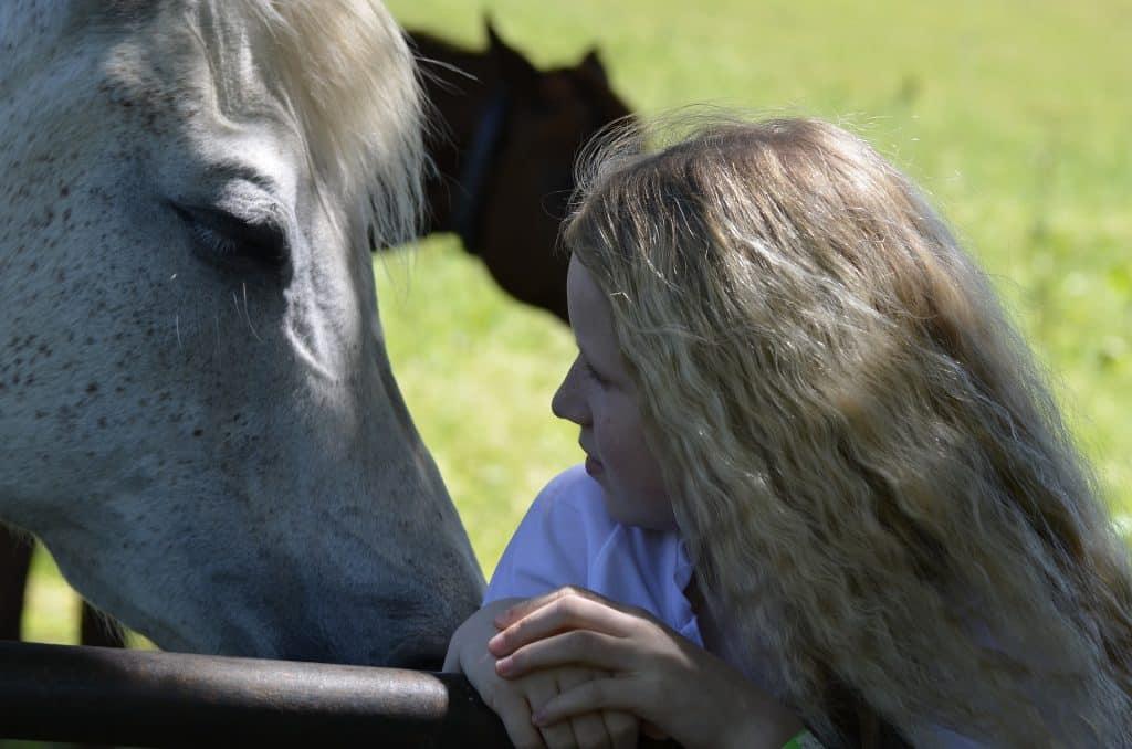 Imagem de uma moça jovem e loira e ao seu lado um cavalo branco. Eles se olham e essa imagem representa a gentileza que devemos ter com os animais.