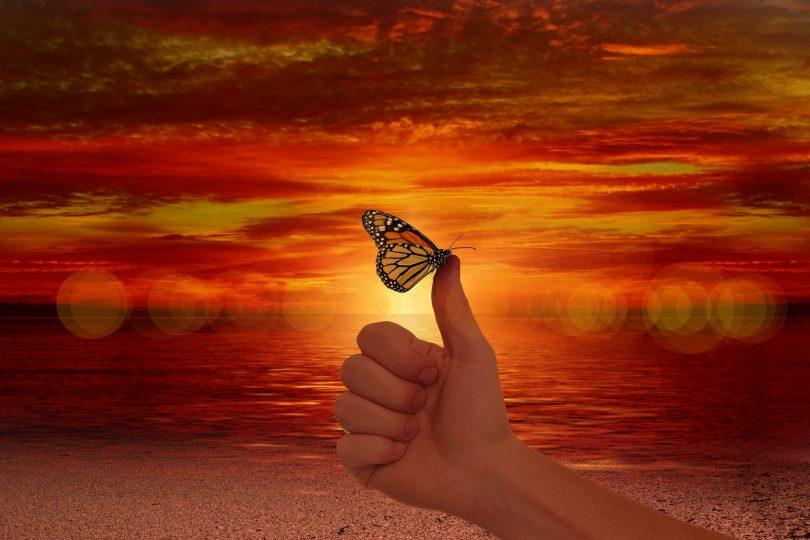 Imagem do dedo polegar fazendo jóia e sobre ele uma borboleta. Ao fundo um lindo por do sol.