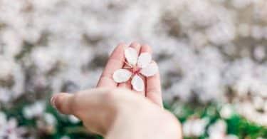 Mulher segurando uma flor na mão