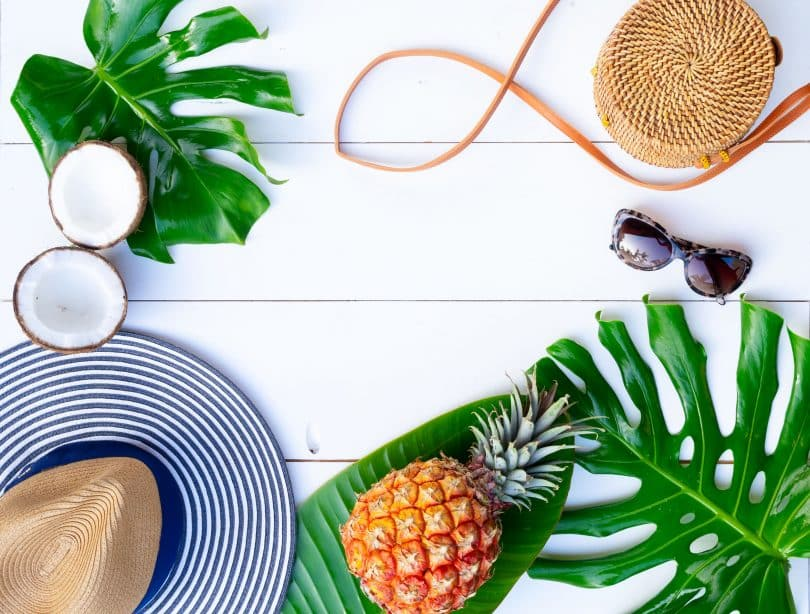 Utensílios praianos, frutas e plantas.