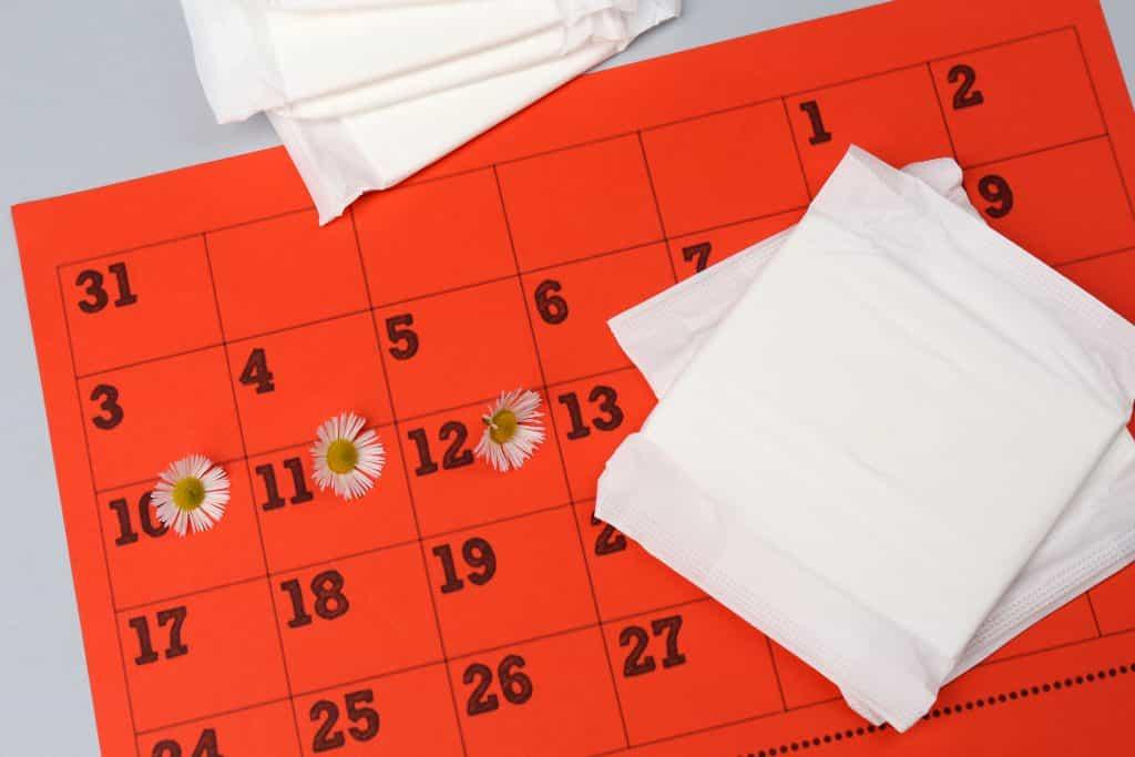 Imagem de um calendário para a contagem do período menstrual. Ao lado dele alguns absorventes femininos.
