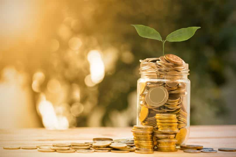Um pote cheio de moedas com uma plantinha em cima