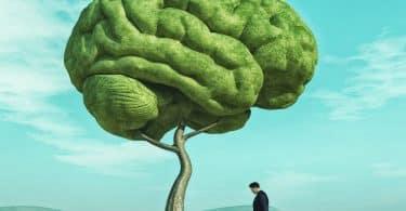 homem regando uma grande árvore em forma de cérebro humano em um campo verde.