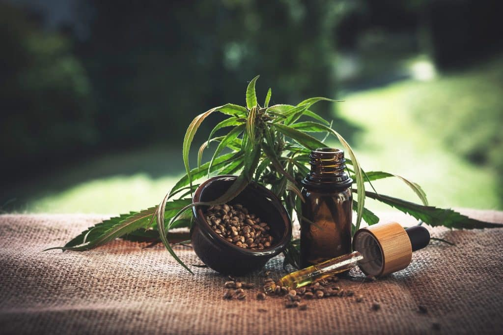 Imagem da erva da maconha natural, disposta sobre uma mesa. Ao lado um pequeno frasco de vidro com um conta gotas. É um remédio feito à base da erva para o covid.
