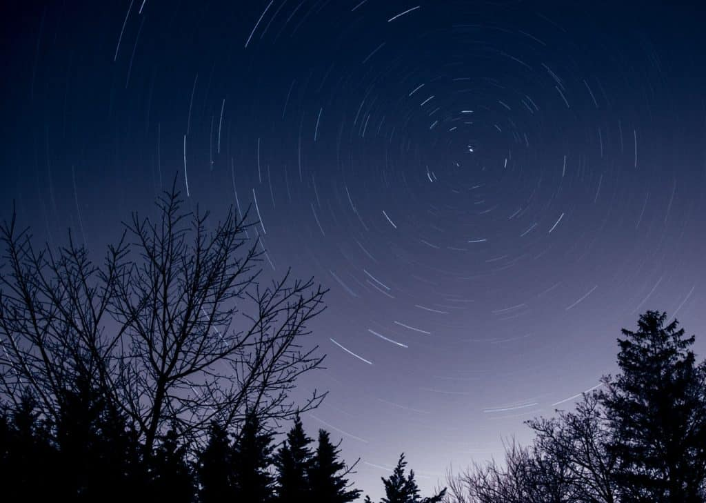Árvores e um céu estrelado.