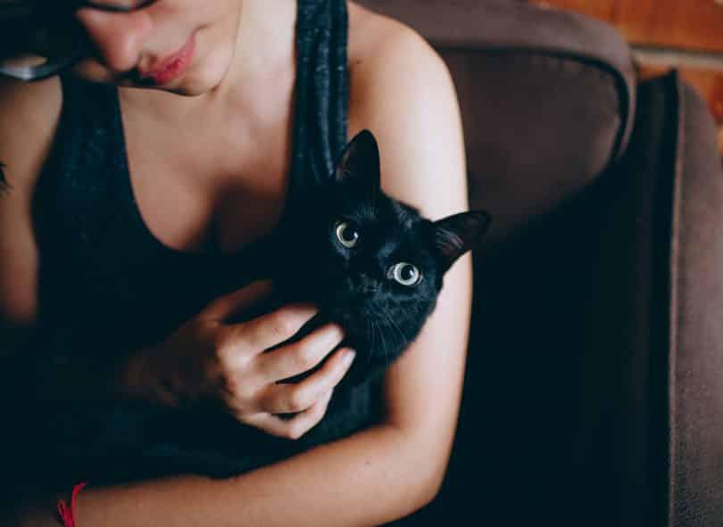 Mulher segurando um gatinho no colo