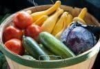 Balde com diversos legumes