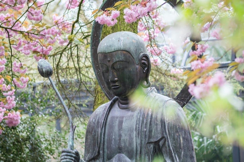 Estátua de buda em meio a árvores de flores rosas.
