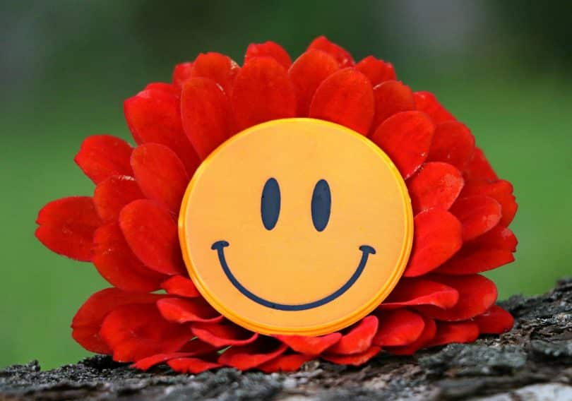 Imagem de um lindo sorrido em formato de flor. O centro da flor é amarelo em formato de carinha. As pétalas são de cor alaranjada.