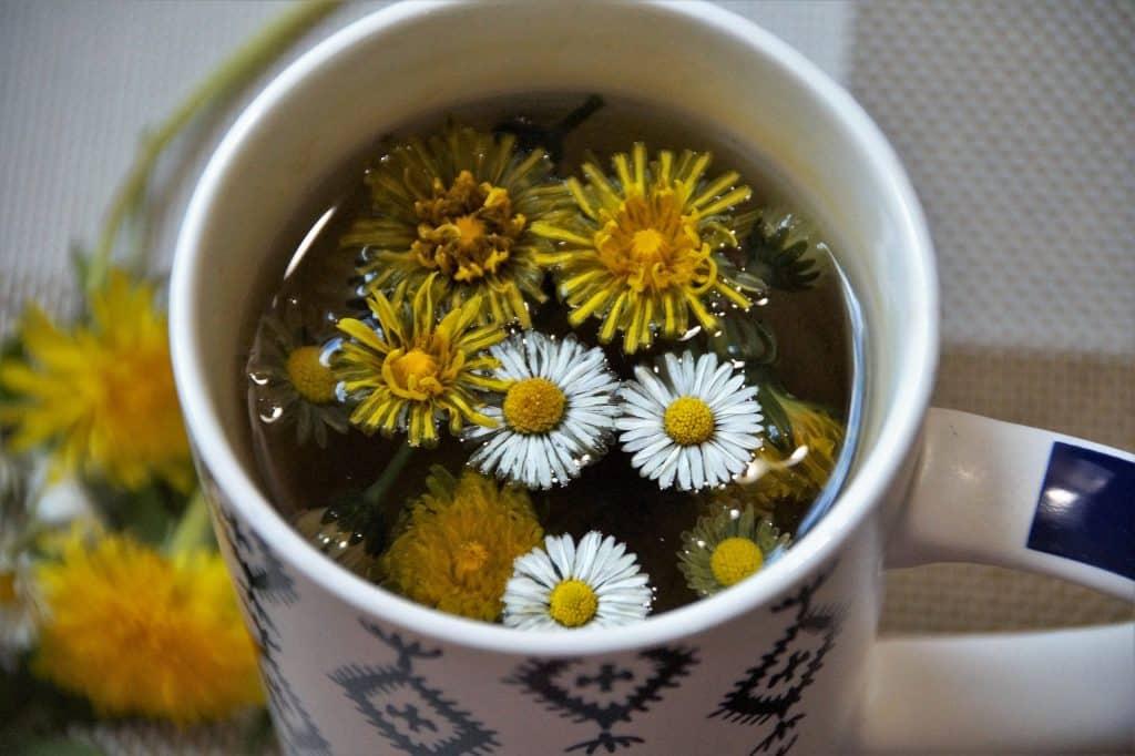 Imagem de um linda caneca branca decorada contendo chá feito com a erva dente de leão, próprio para ajudar no processo de desintoxicação.