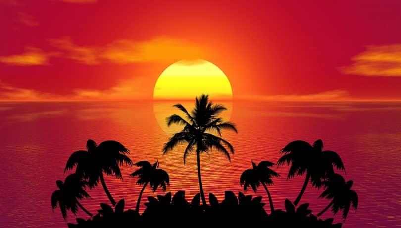 Imagem avermelhada e bem tropical de um lindo por do sol. À frente dele, vários coqueiros complementam a imagem que represanta o solstício de verão.