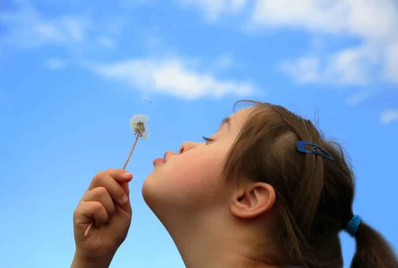 Imagem de uma criança portadora da síndrome de down. Ao fundo o céu azul e algumas nuvens brancas. A criança está feliz e assopra um dente de leão.