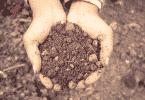 Par de mãos segurando um punhado de terra