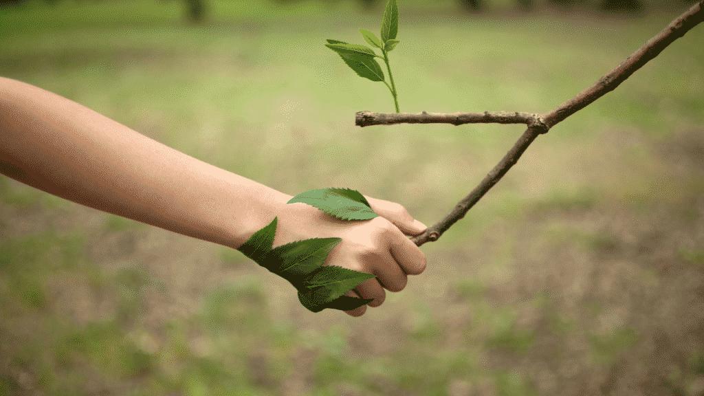 """Mão de criança dando um """"aperto de mãos"""" com o galho de uma árvore"""
