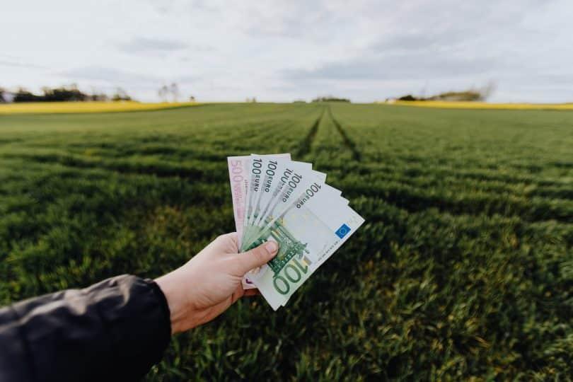 Pessoa segurando notas de dinheiro em um campo com gramado