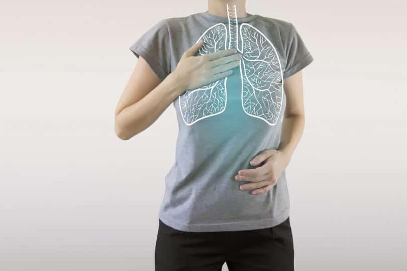 Imagem representativa de pulmões em um corpo feminino.