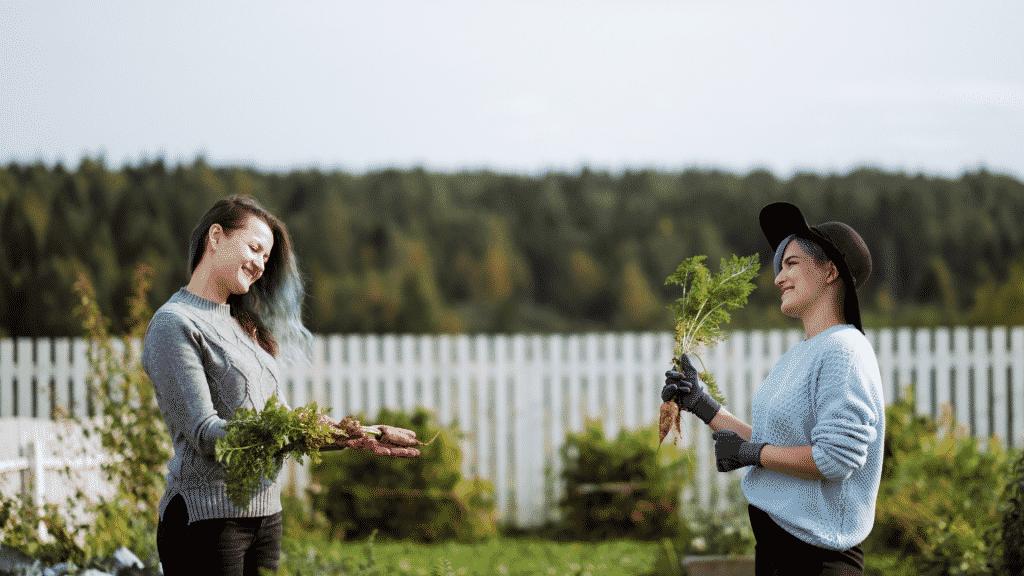 Duas mulheres em uma horta oferecendo hortaliças uma para a outra