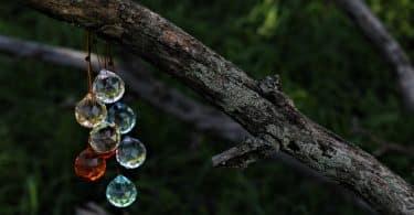 Imagem de vários cristais multifacetados coloridos, presos em um galho de uma árvore.