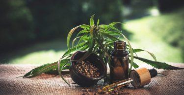 Imagem de folhas da maconha sobre uma mesa forrada com tecido de juta. Ao lado um pequeno vidro e um conta gostas. Dentro do vidro existe o óleo da maconha.