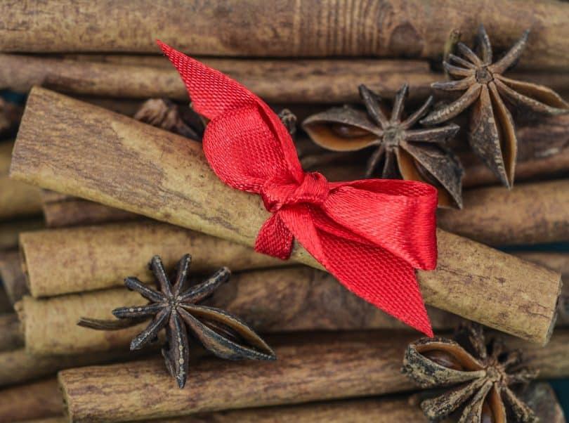 Imagem de várias canelas em pau e sobre elas uma está em destaque sendo representada com um laço vermelho. Sobre elas alguns anis estrelados.