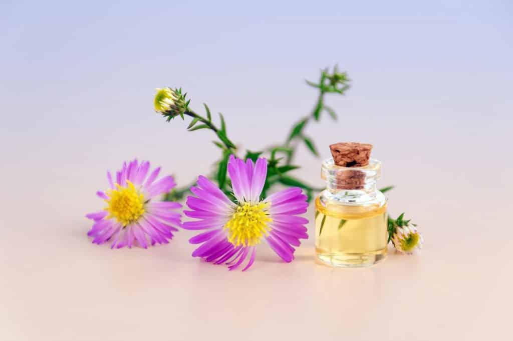 Imagem com lindas flores nas cores roxa e branca com miolo amarelo. Ao lado um pequeno frasco de vidro contendo óleo essencial.