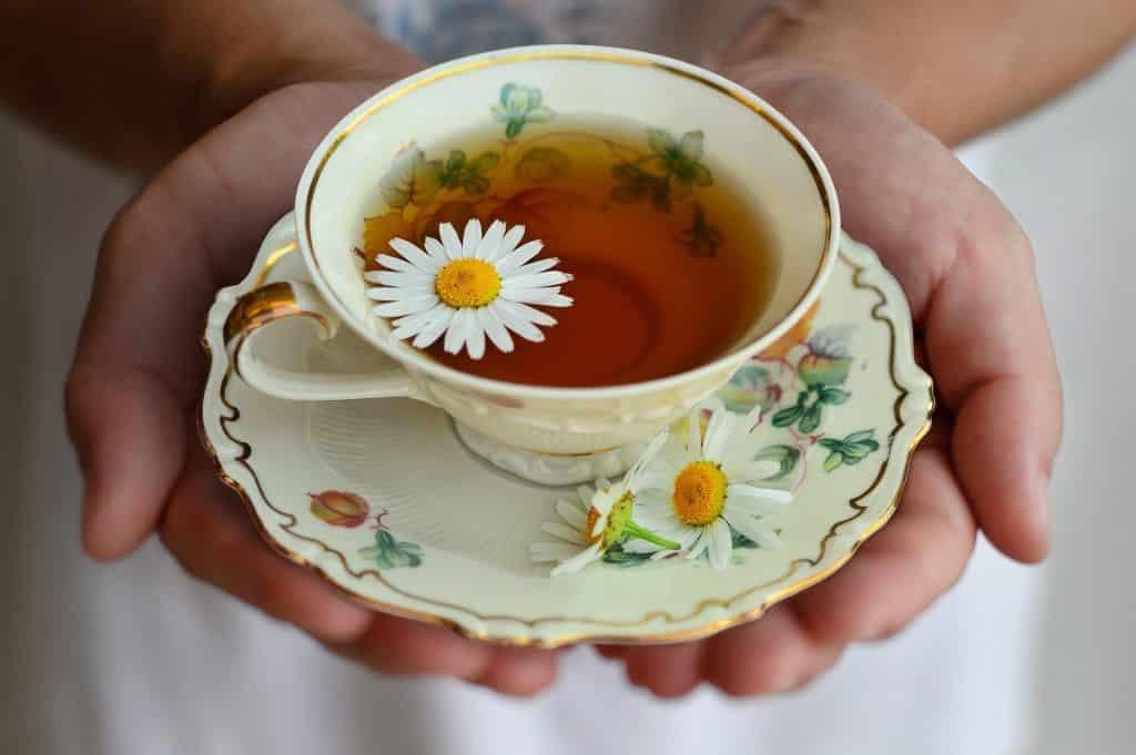 Imagem de uma mão segurando uma xícara de chá de porcelana disposta sobre um pires decorado com margaridas.