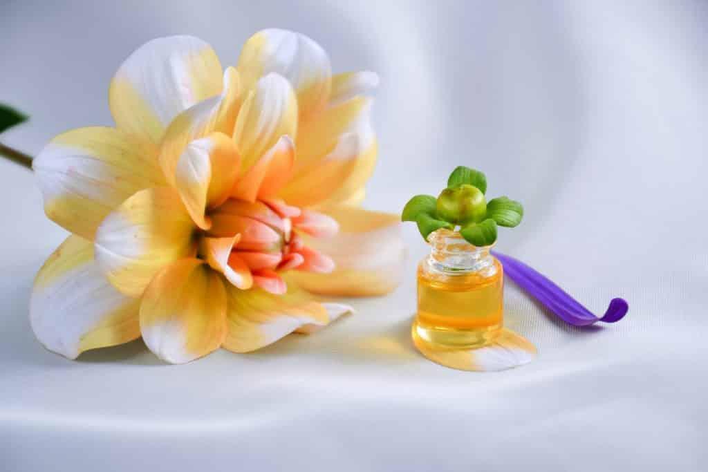 Imagem de uma linda flor nas cores laranja e branco. Ao lado dela um pequeno vidro contendo óleo essencial.