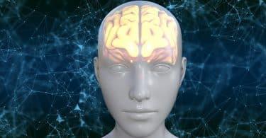 Imagem do rosto de um avatar humano onde parte da cabeça dele está iluminada mostrando o cérebro.