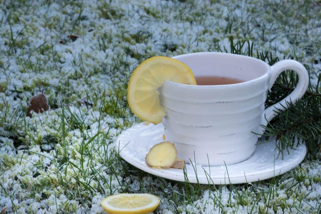 Imagem com fundo florido e em destaque uma xícara de chá sobre um pires de porcelana, ambos na cor branca. Na xícara contém chá de limão com gengibre.