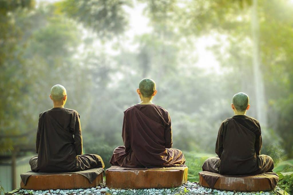 Imagem de três homens carecas, sentados de costas em um tronco de árvore meditando de frente para uma floresta. Os três usam uma túnica na cor marrom.
