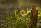 Essência de floral de bach