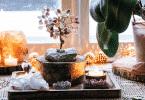 Elementos de plantas e rochas que trazem energias positivas para a casa