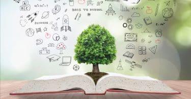 Livro aberto com árvore verde ao centro e símbolos desenhados atrás.