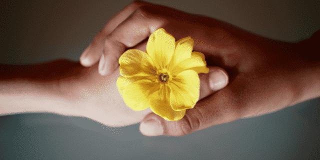 Duas pessoas segurando uma flor juntas